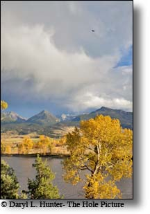 Fall colors and the Yellowstone River in Paradise Valley Montana