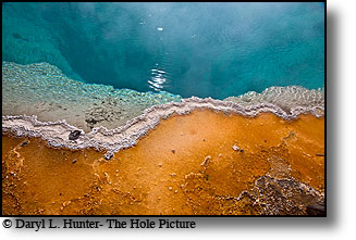thermal feature hot spring, blue water, orange bactaria, Yellowstone National Park