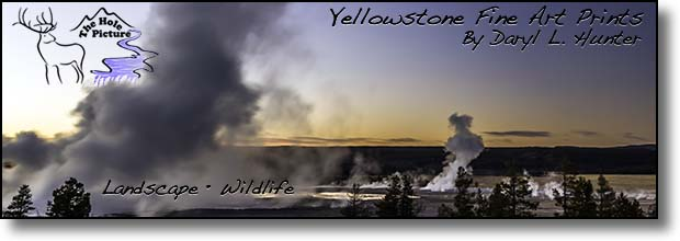 Yellowstone Fine Art Prints by Daryl L. Hunter