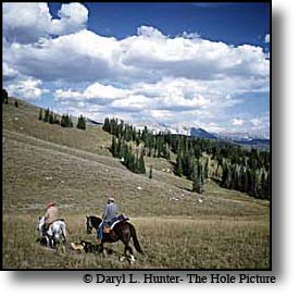 Mule Deer Hunters hunting the high country around Yellowstone