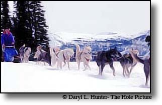 International Pedigree Stage Stop Sled Dog Race is one of the most prestigious dog sled races in the world