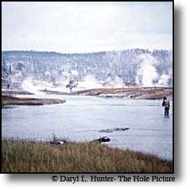firehole river fly-fisherman, yellowstone park