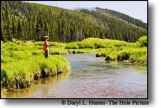 boy fishing Indian Creek in Yellowstone National Park