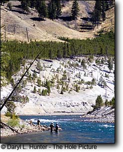 Fly-fishing the Yellowstone River, Yellowstone National Park