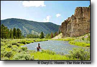 Gallatin River Fly-fisherman