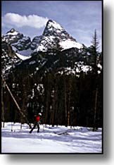 cross country skiing Grand Teton National Park
