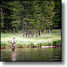 yellowstone fly-fisher